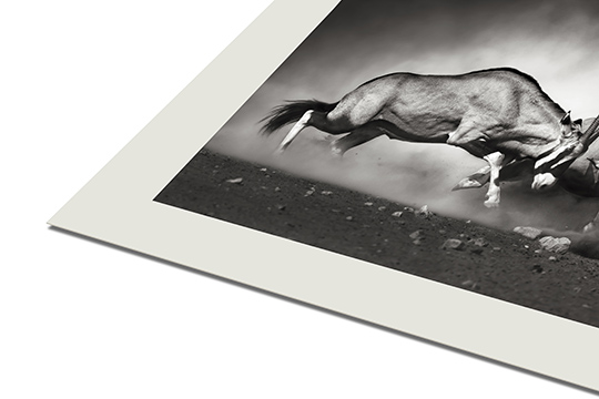 CANSON® INFINITY RAG PHOTOGRAPHIQUE 310 G/M² - MATE